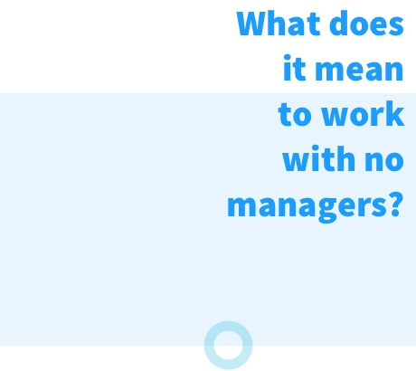 Nmbrs company with no managers - What does it mean to work with no managers